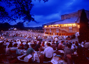 Photo of audience on lawn at Filene Center II - Wolf Trap   Farm Park for the Performing Arts